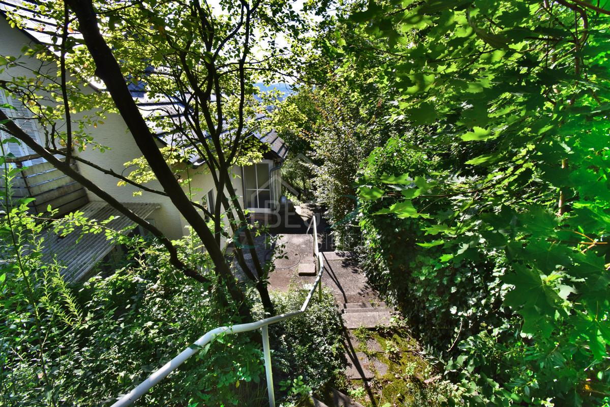 Treppe,Eingang